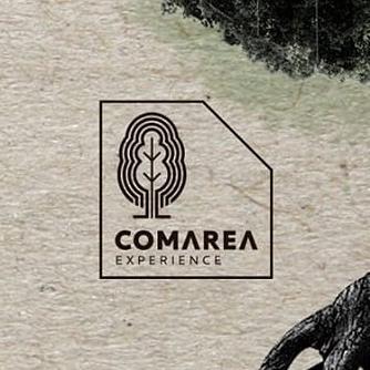 logo-festival-comarea
