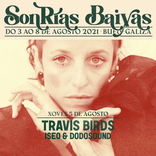 travis-birds